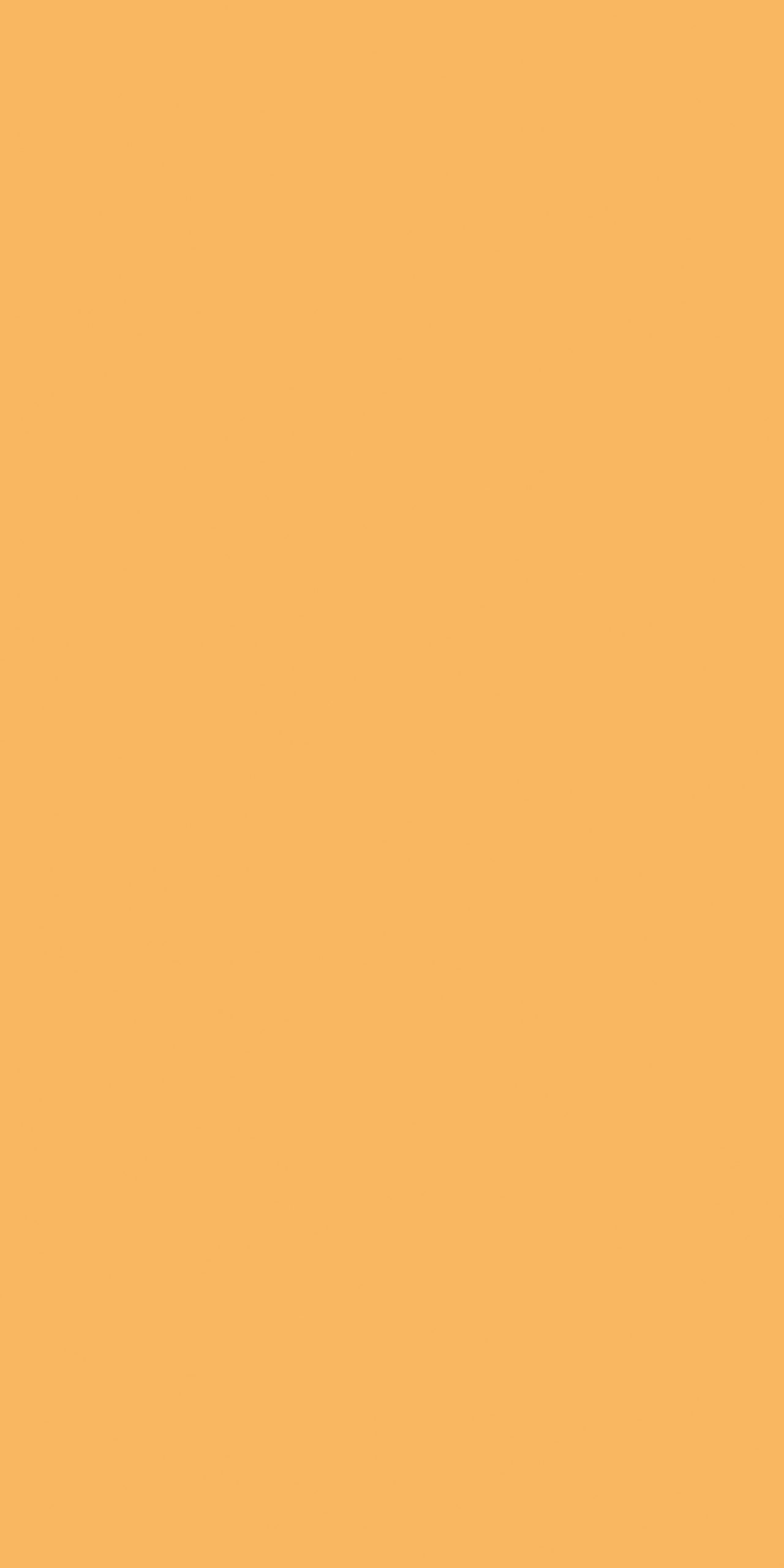 Buildtech 2.0 Bold Colors Creme Glossy 6mm 120 x 240