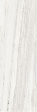 Palissandro White Levigata Lucida 6mm 80 x 240