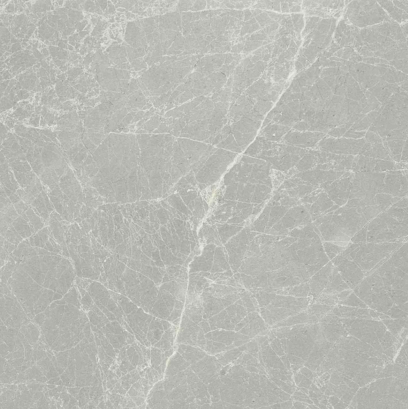 Exalt of Cerim Silver Light Matte 10mm 60 x 60