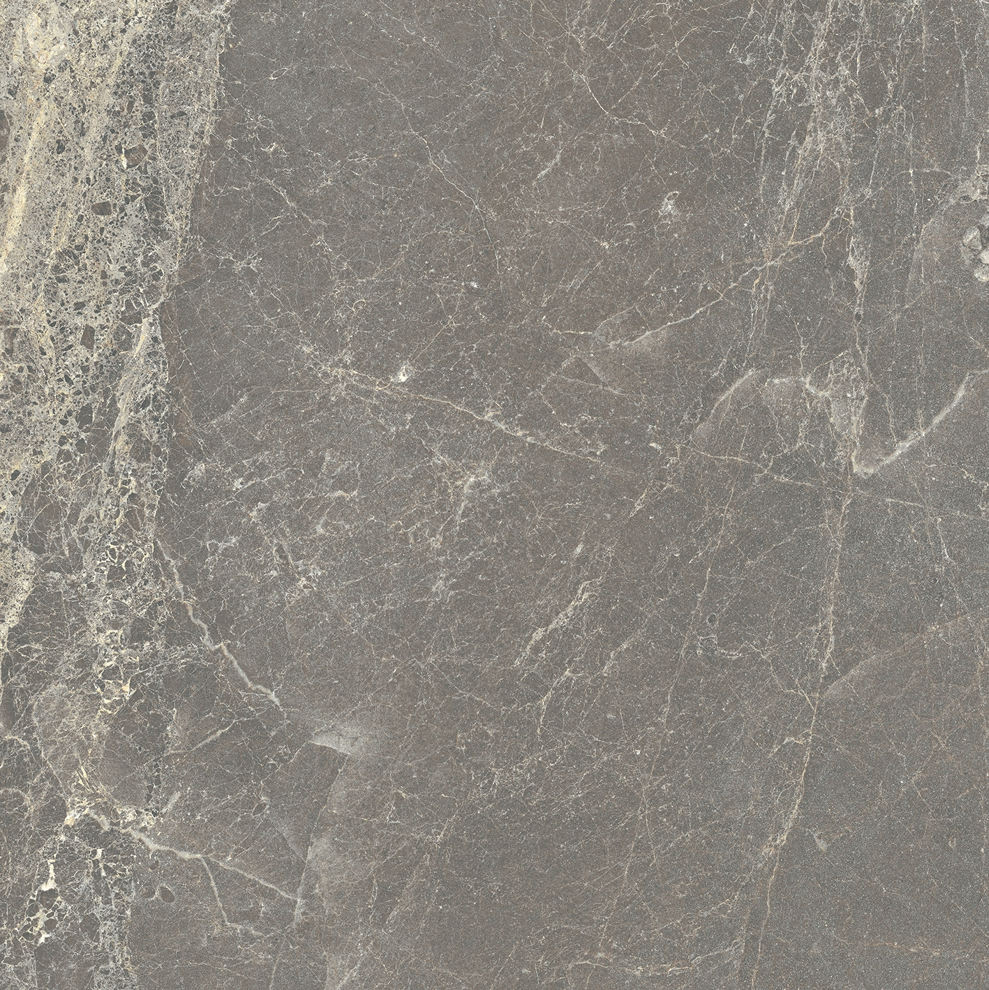 Exalt of Cerim Gray Lace Glossy 10mm 60 x 60