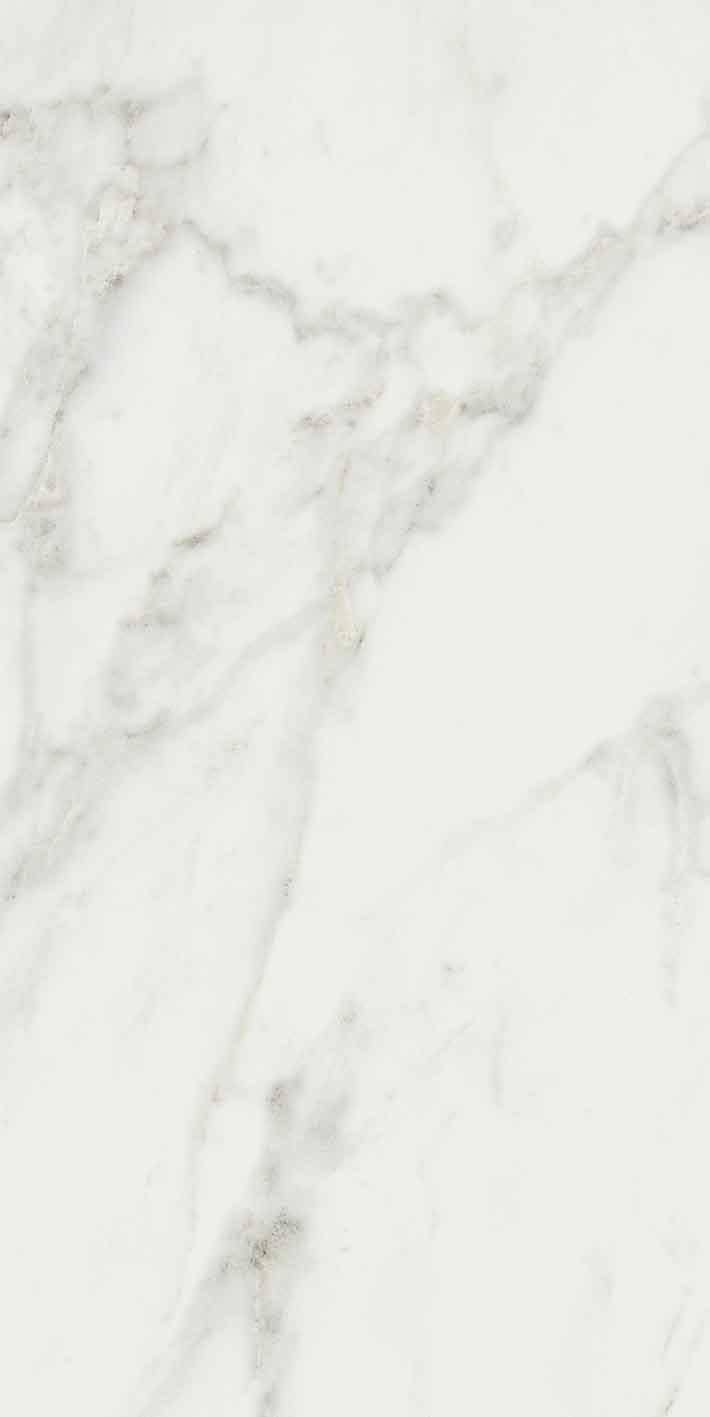 Exalt of Cerim Magic White Glossy 10mm 40 x 80