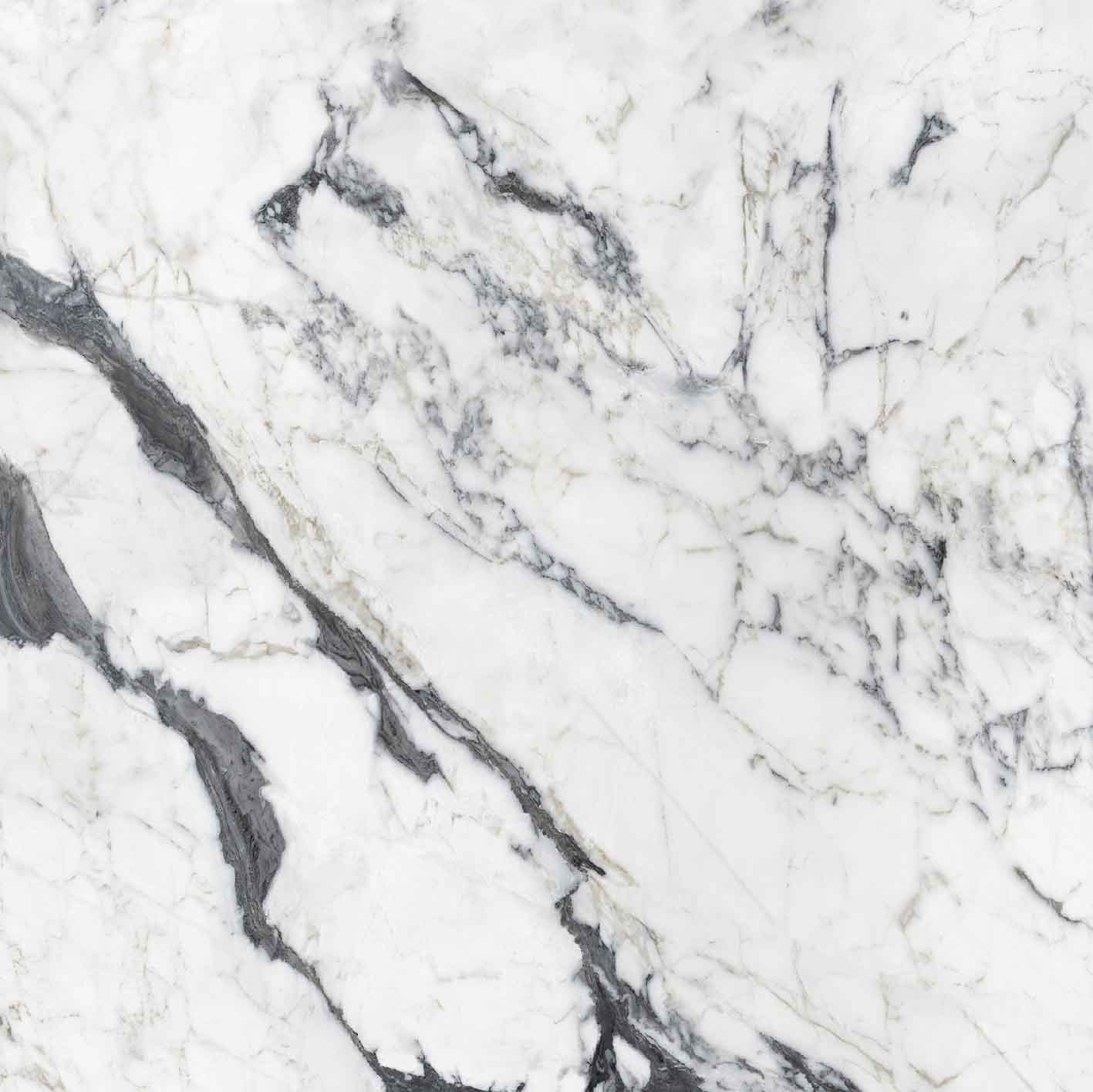 Les Bijoux de Rex Calacatta Altissimo Blanc Glossy 6mm 160 x 160