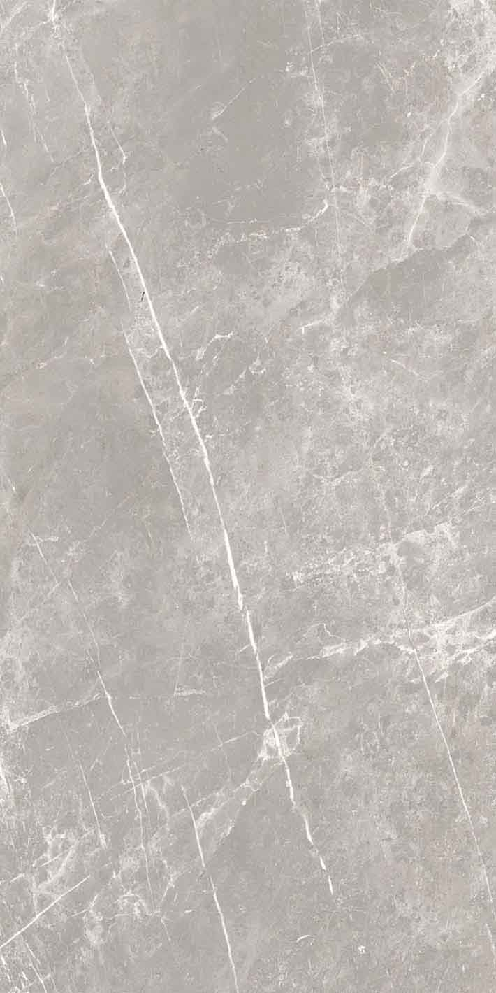 Elemental Stone Grey Dolomia Glossy 10mm 60 x 120
