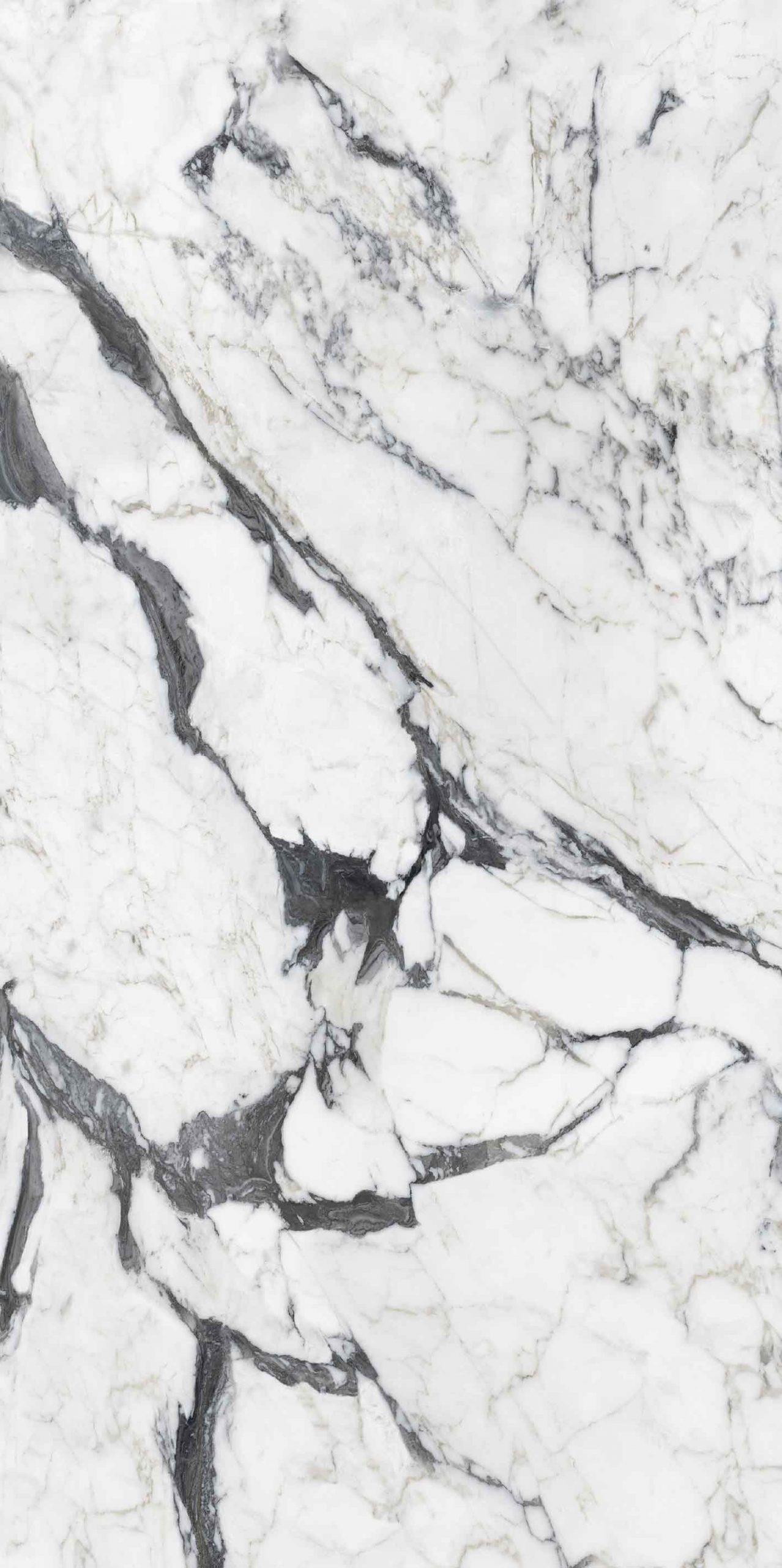 Les Bijoux de Rex Calacatta Altissimo Blanc Matte 6mm 120 x 240