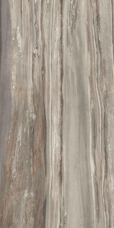 Etoile de Rex Tropical Glossy 6mm 160 x 320