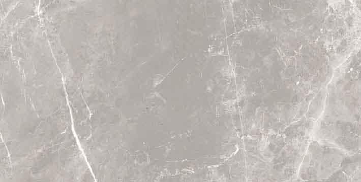 Elemental Stone Grey Dolomia Glossy 10mm 30 x 60