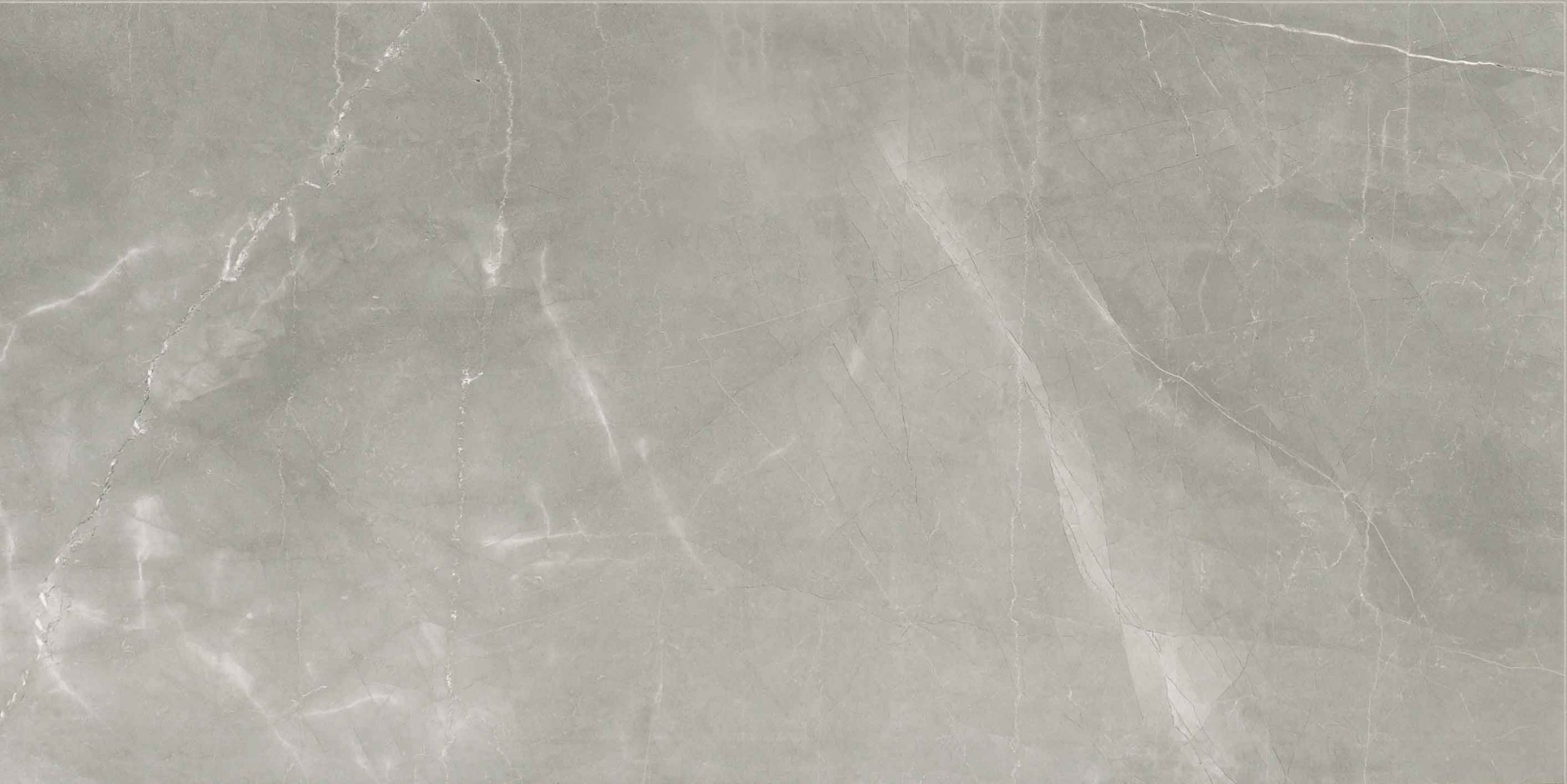 Timeless Amani Grey Matte 10mm 60 x 120