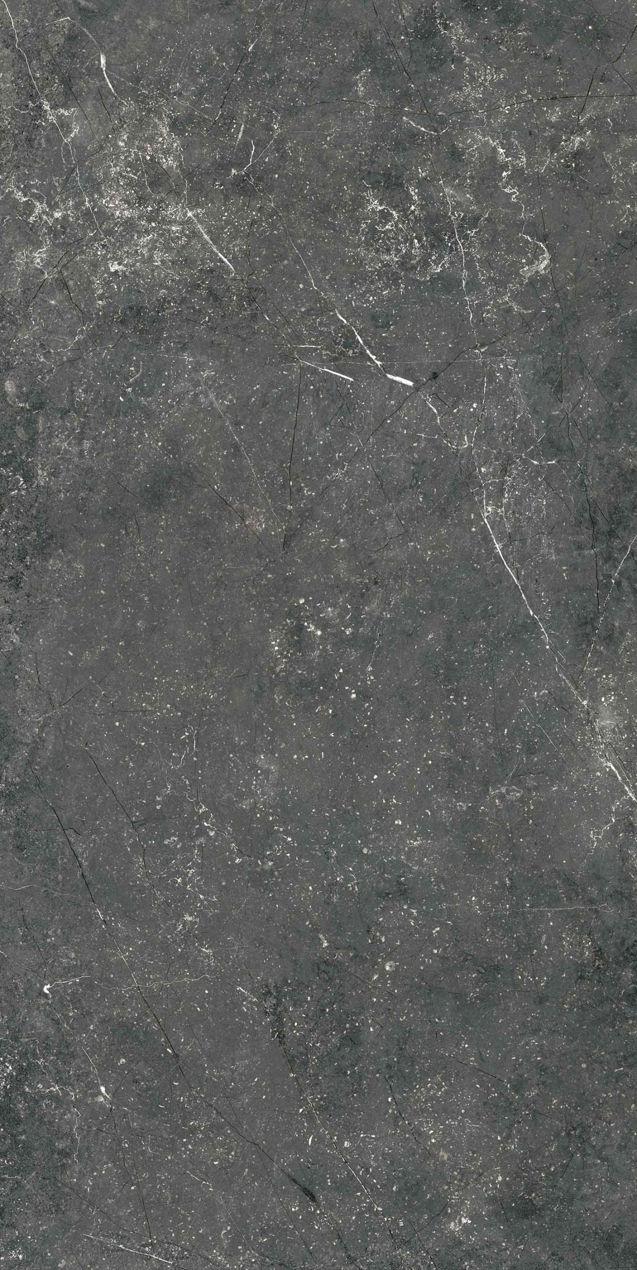 Stontech 4.0 Stone 06 R+PTV 10mm 60 x 120