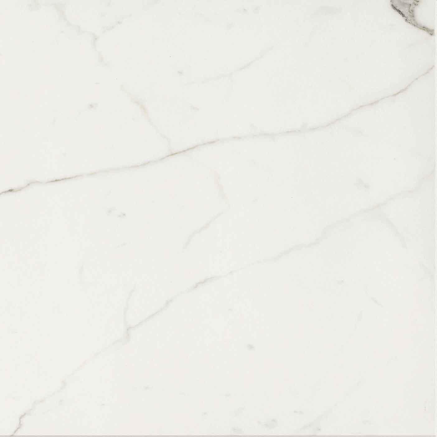 Timeless Calacatta Glossy 10mm 60 x 60
