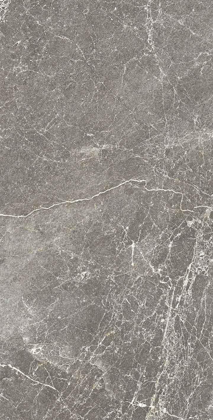 Exalt of Cerim Gray Lace Glossy 10mm 30 x 60