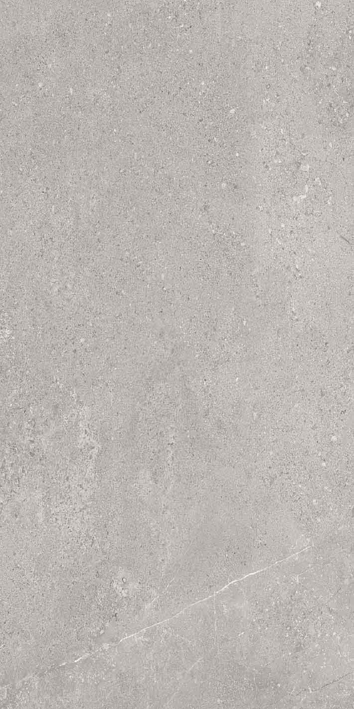 Elemental Stone Grey Limestone Glossy 10mm 60 x 120