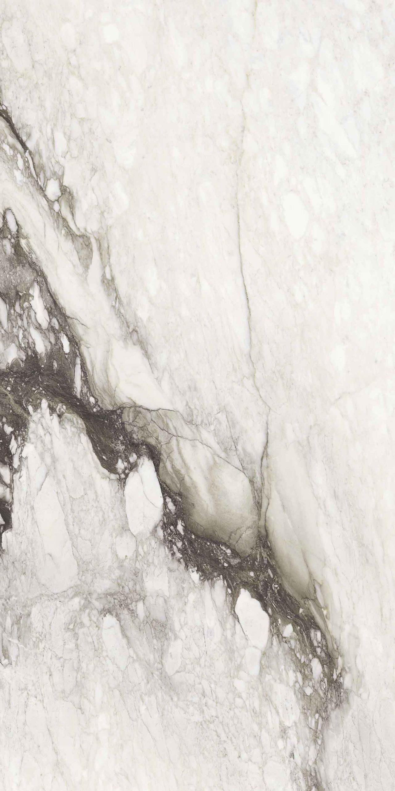 Etoile de Rex Renoir Matte 6mm 120 x 240