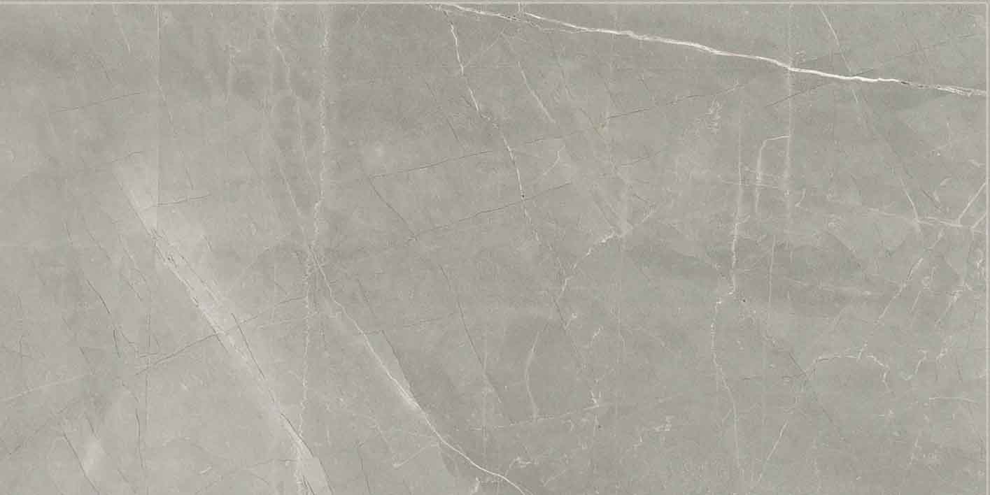 Timeless Amani Grey Matte 10mm 30 x 60