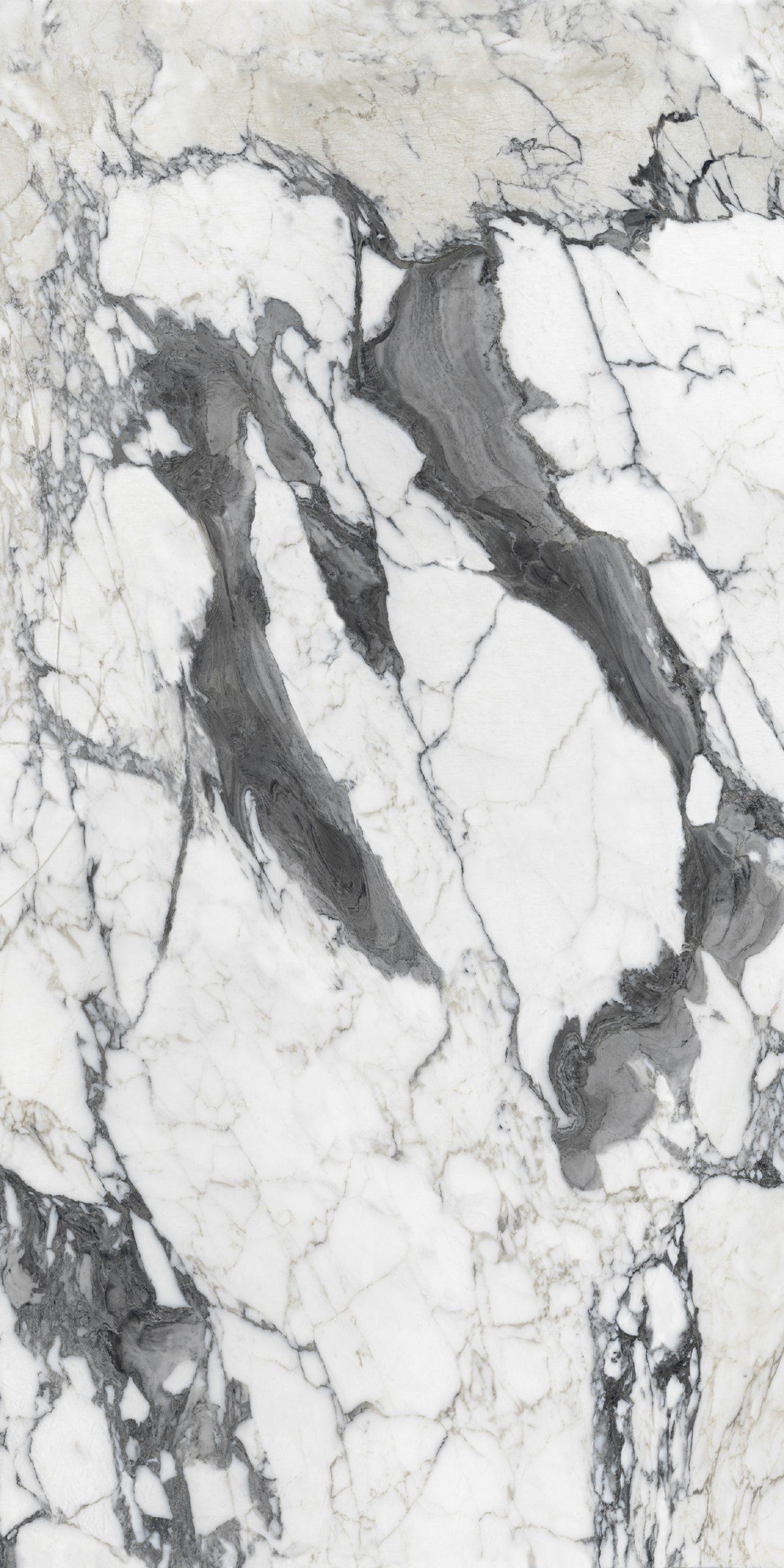 Les Bijoux de Rex Calacatta Altissimo Blanc Glossy 10mm 60 x 120
