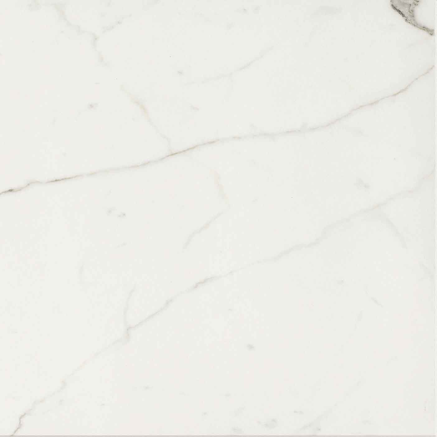 Timeless Calacatta Matte 10mm 60 x 60
