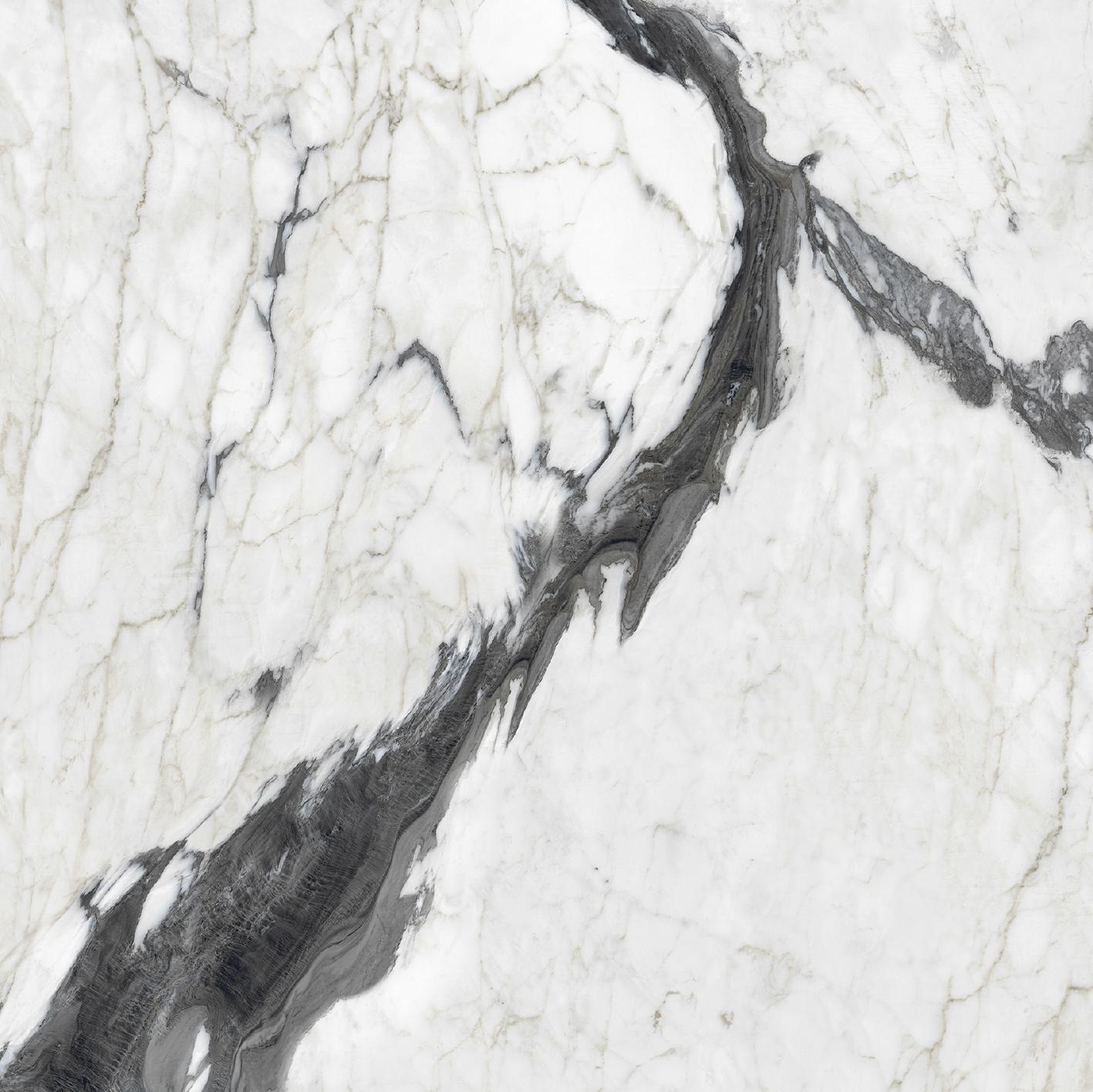 Les Bijoux de Rex Calacatta Altissimo Blanc Matte 10mm 60 x 60