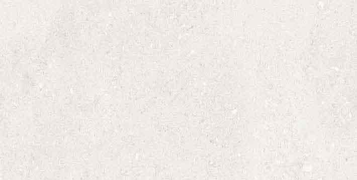 Elemental Stone White Limestone Matte 10mm 30 x 60