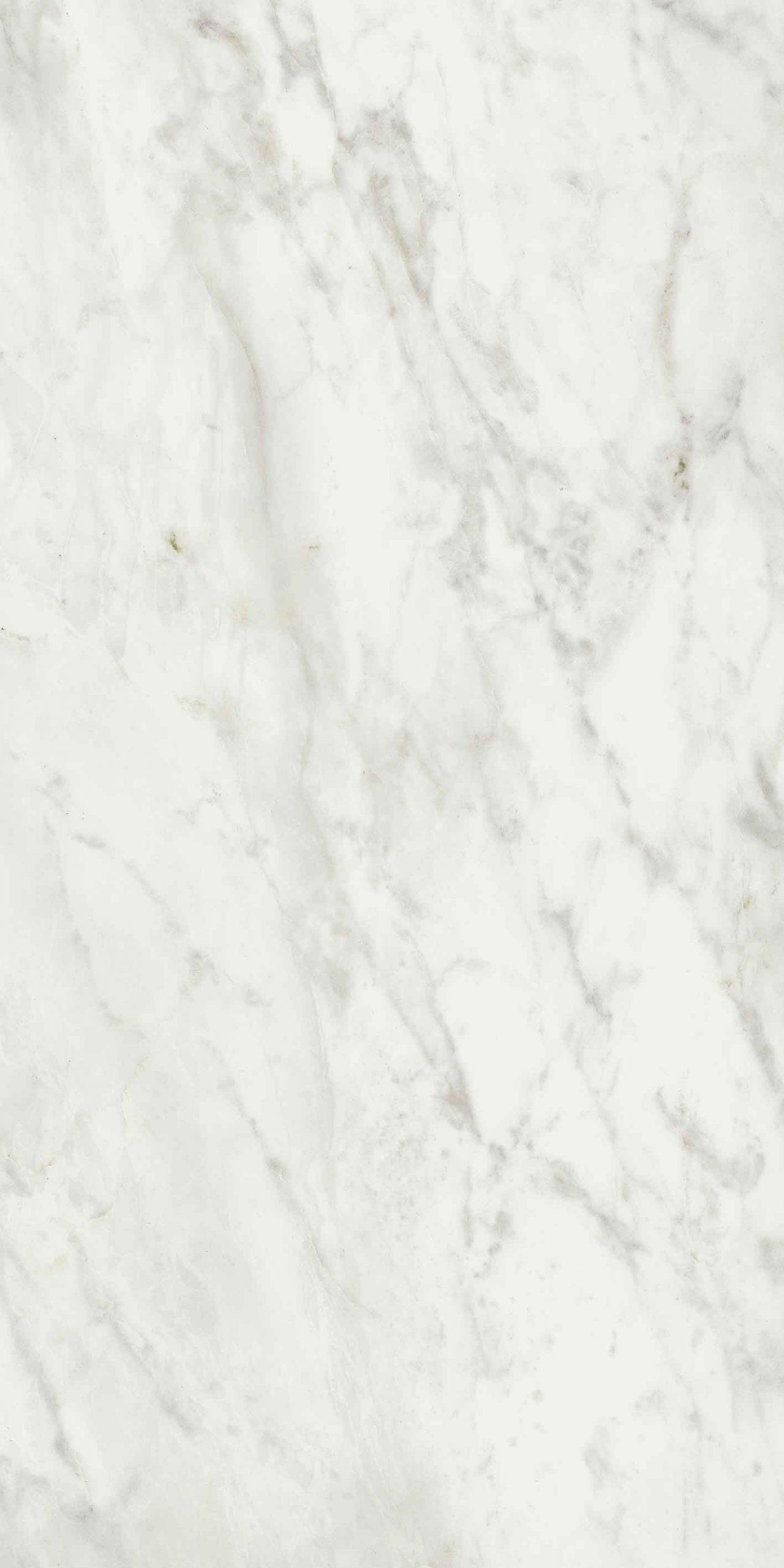 Exalt of Cerim Magic White Matte 10mm 60 x 120