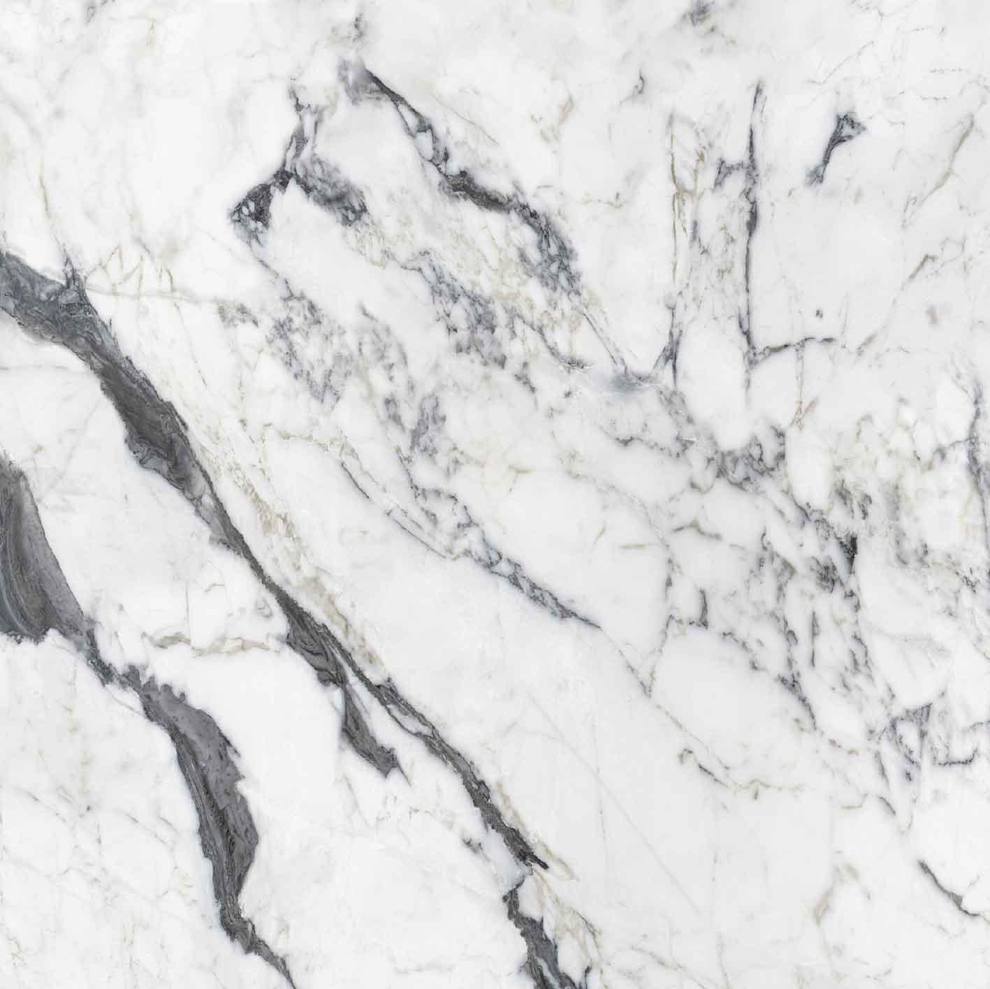 Les Bijoux de Rex Calacatta Altissimo Blanc Glossy 6mm 120 x 120