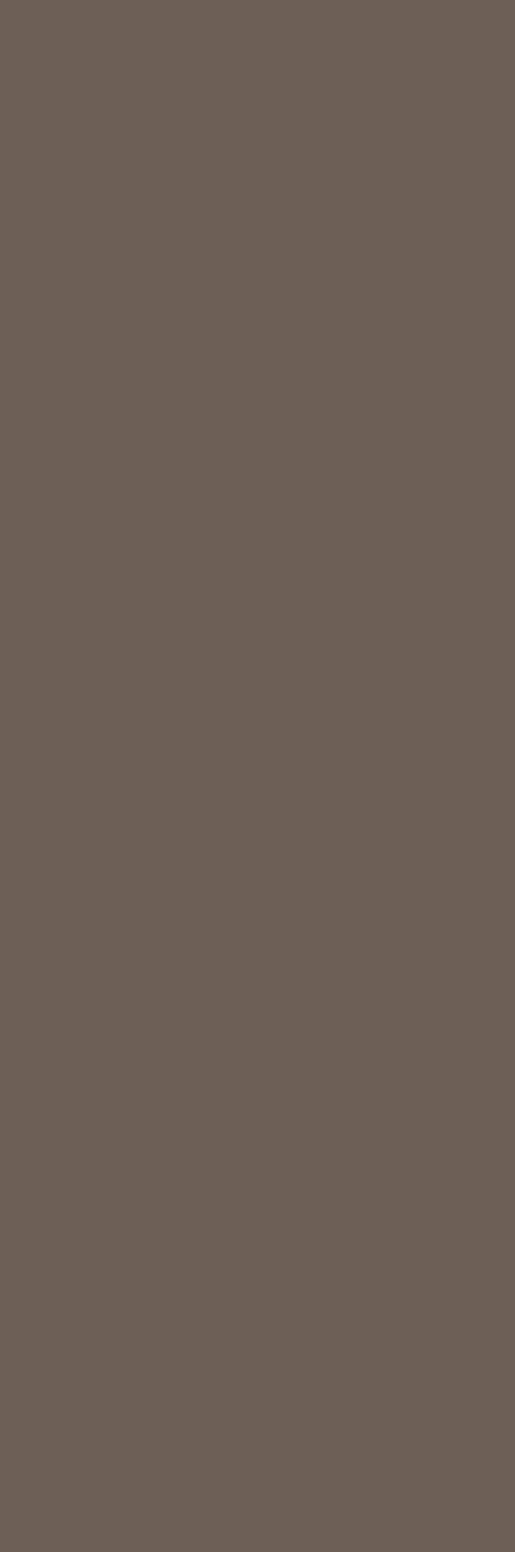 Crayons of Cerim Hazelnut Matte 6mm 40 x 120