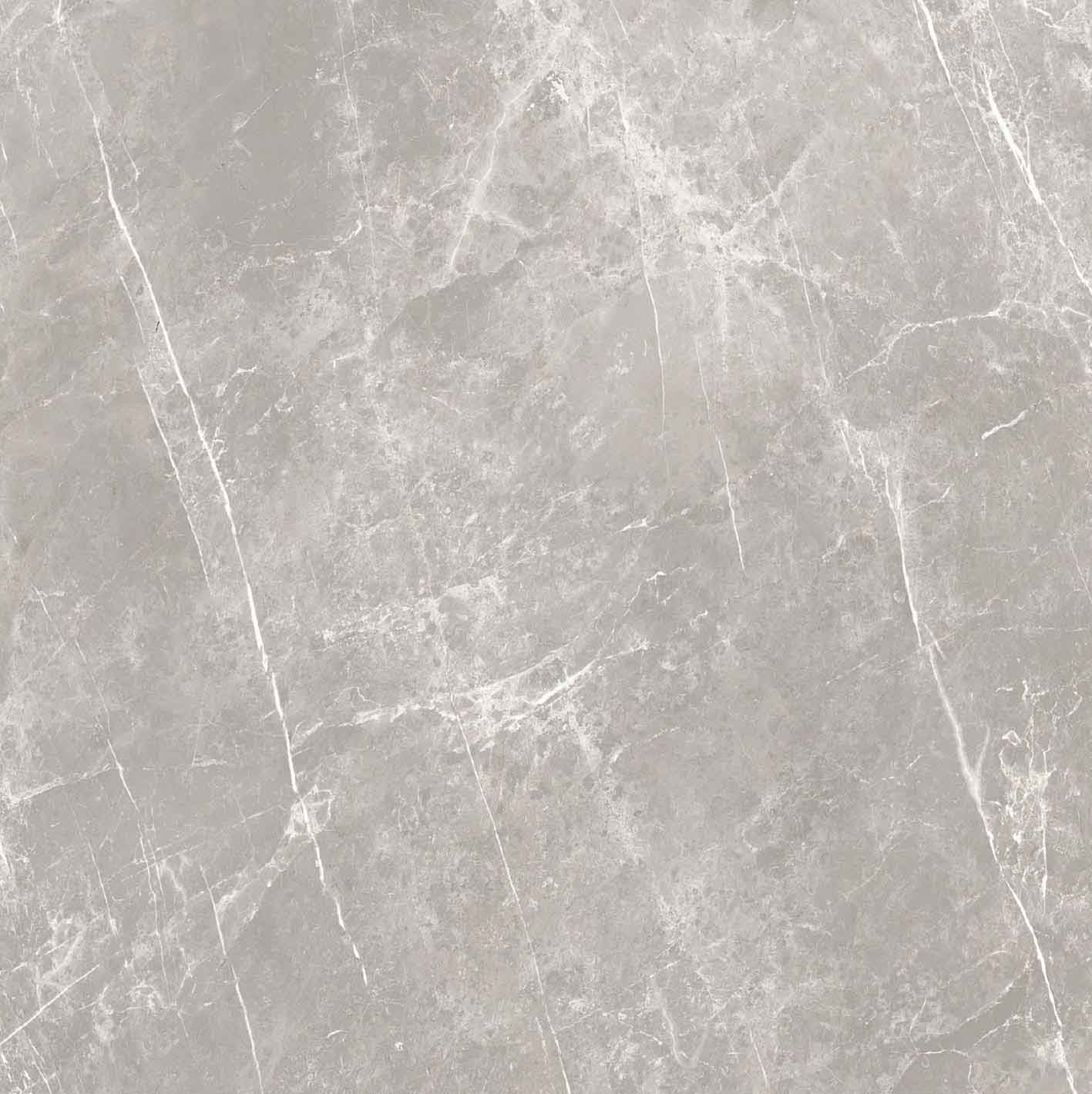 Elemental Stone Grey Dolomia Glossy 10mm 120 x 120