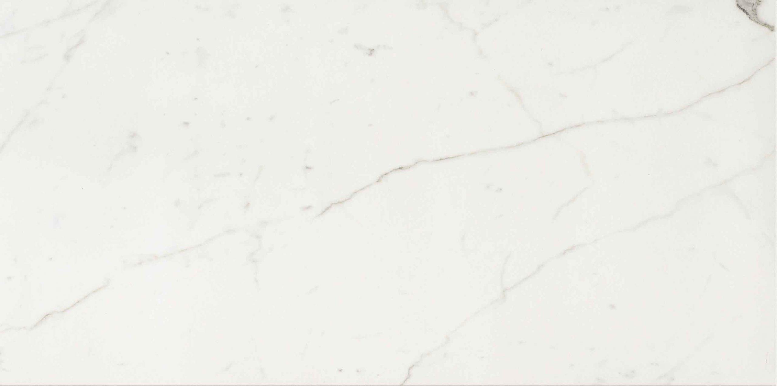 Timeless Calacatta Matte 10mm 60 x 120