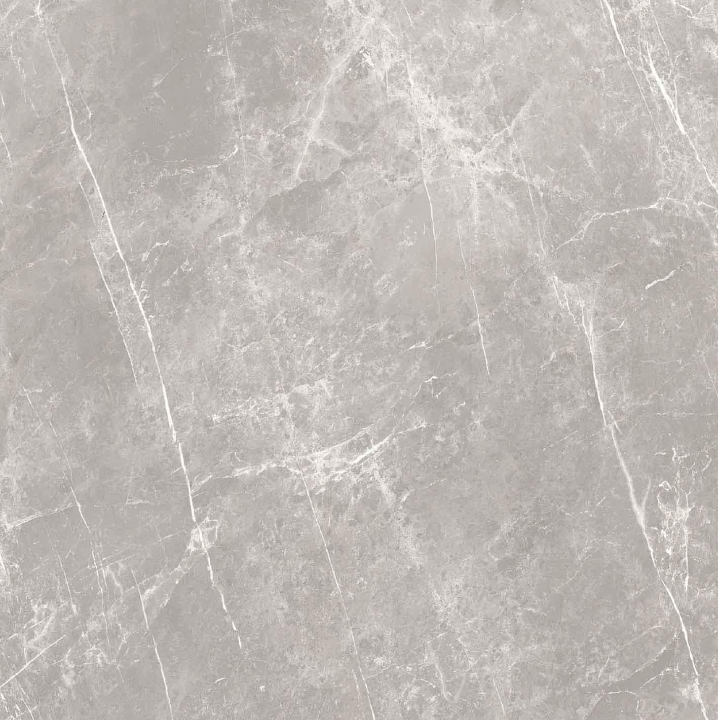 Elemental Stone Grey Dolomia Matte 10mm 120 x 120