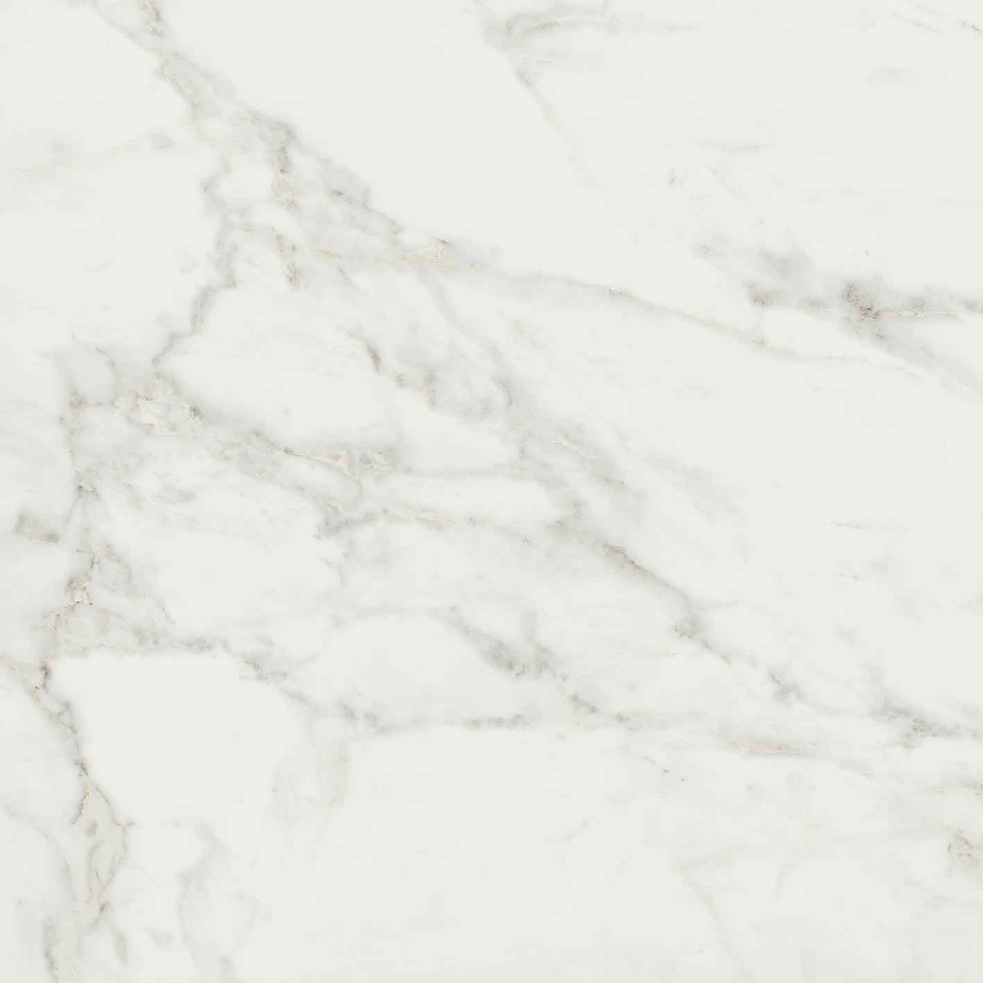 Exalt of Cerim Magic White Glossy 10mm 80 x 80