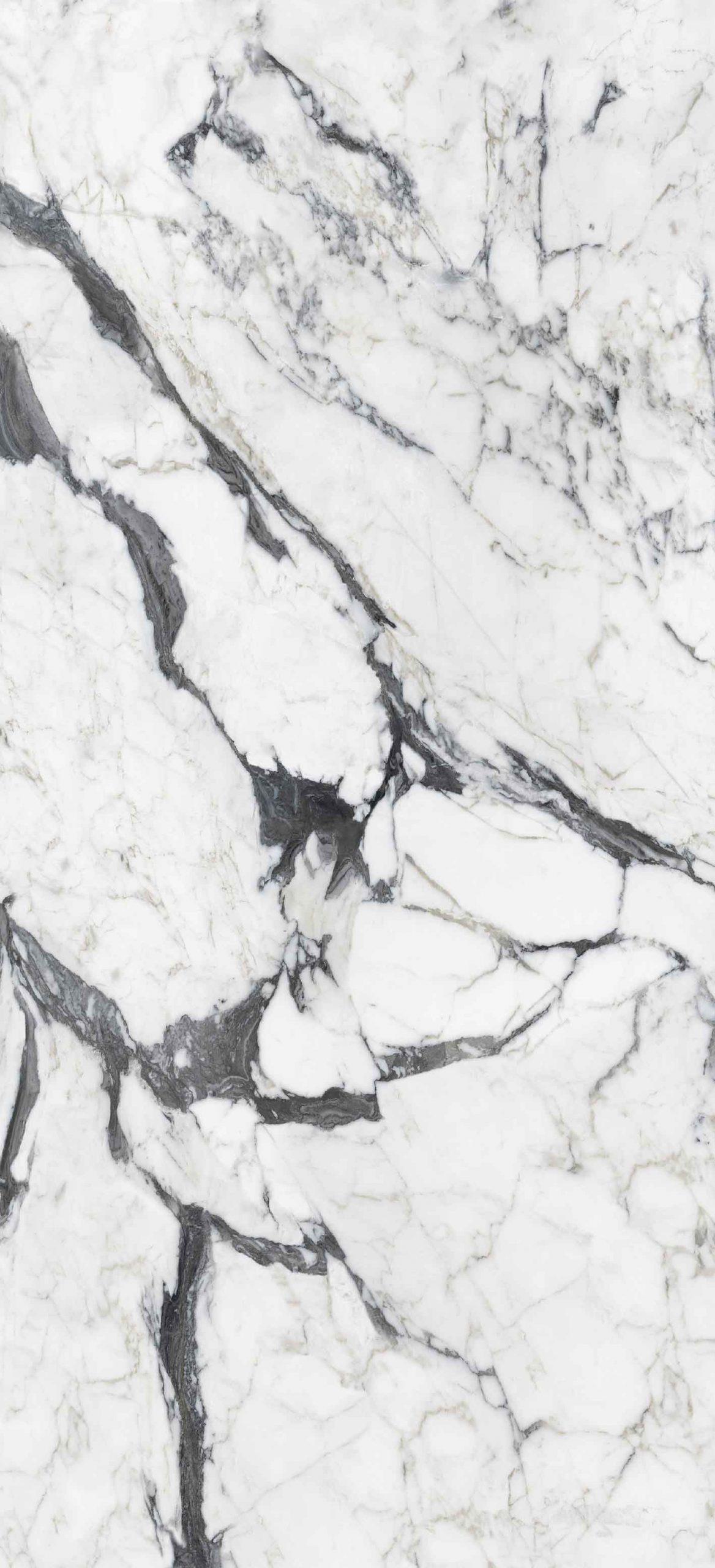 Les Bijoux de Rex Calacatta Altissimo Blanc Glossy 6mm 120 x 280