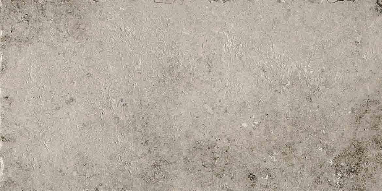 La Roche di Rex Grey Anitque Matte 10mm 40 x 80