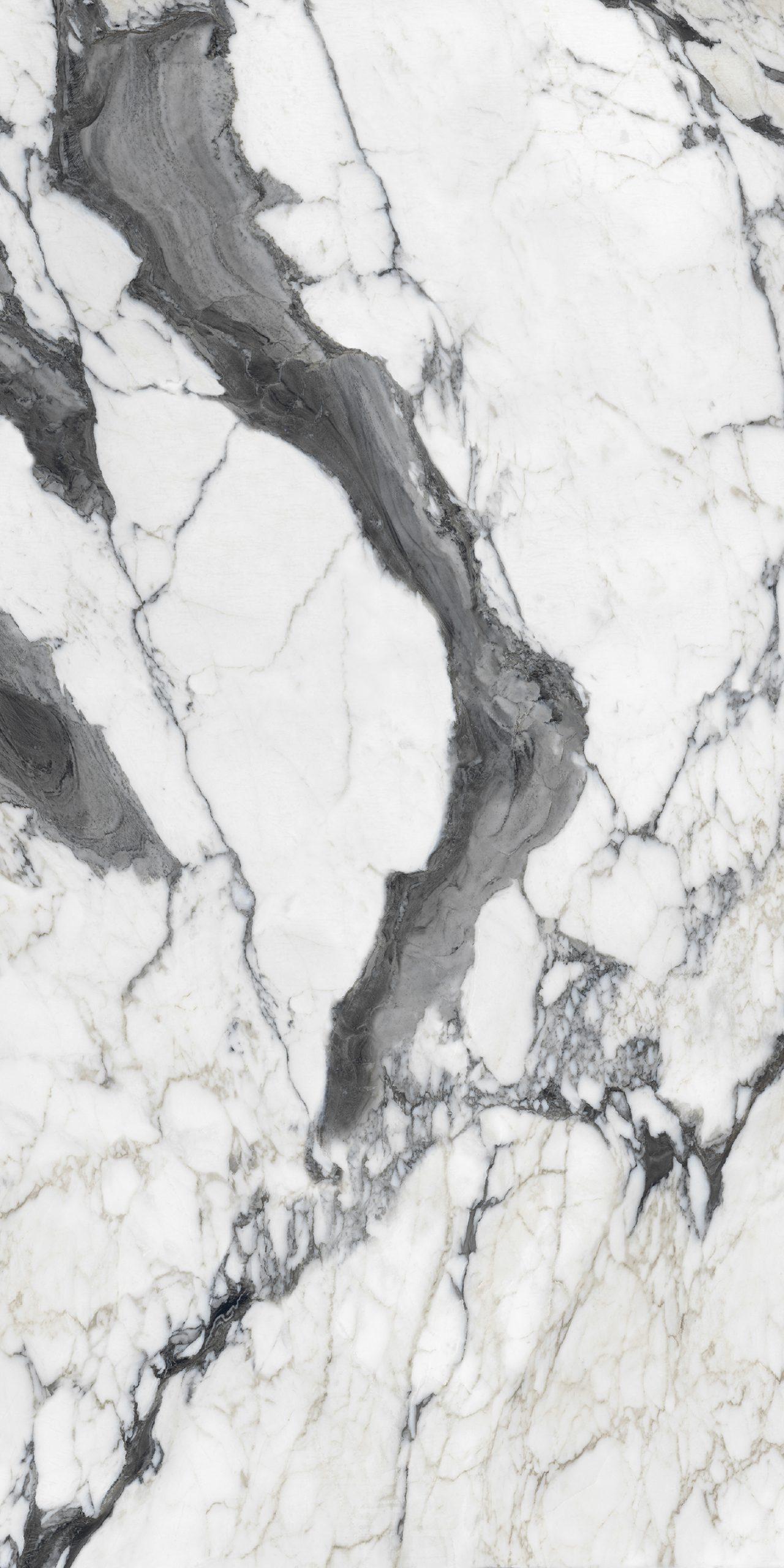 Les Bijoux de Rex Calacatta Altissimo Blanc Glossy 10mm 40 x 80