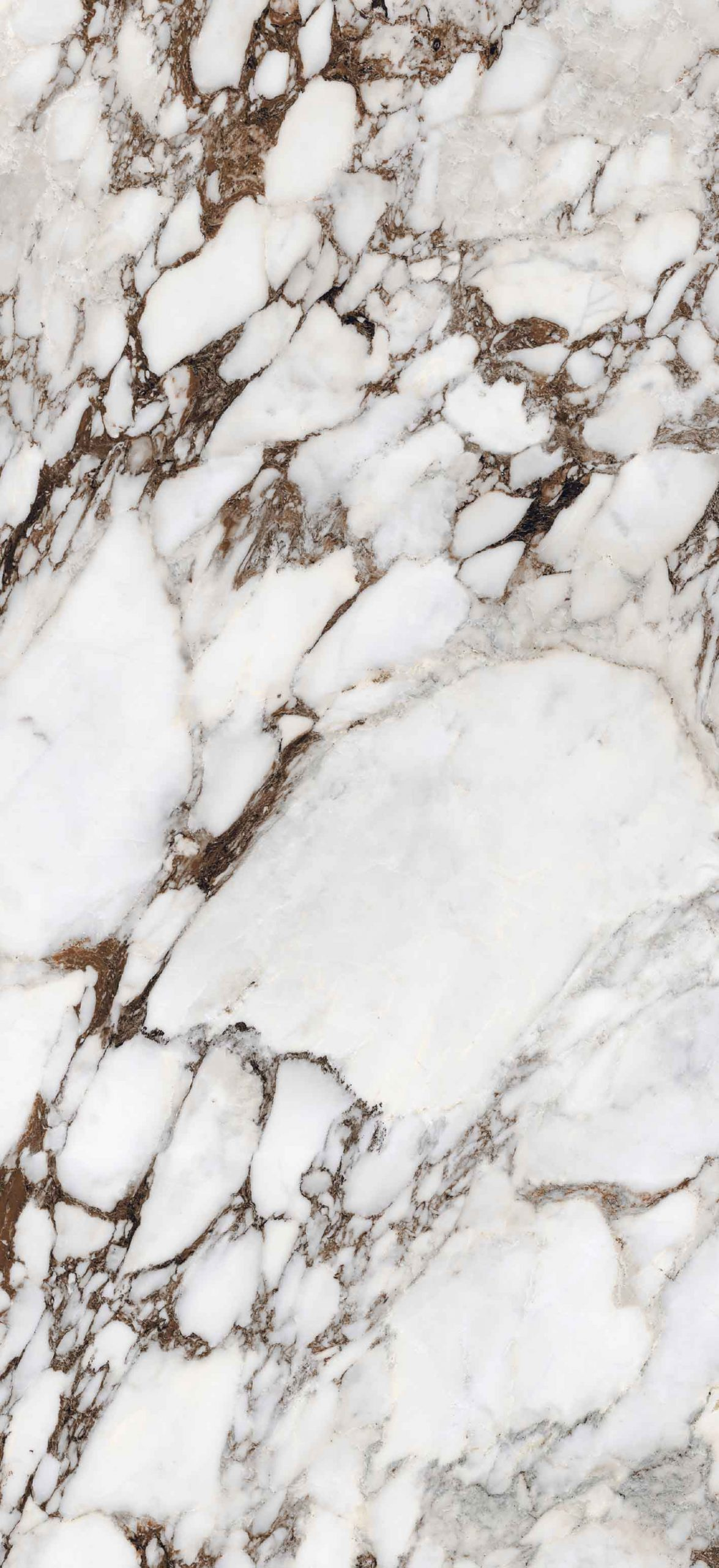 Les Bijoux de Rex Breche Capraia Glossy 6mm 120 x 280