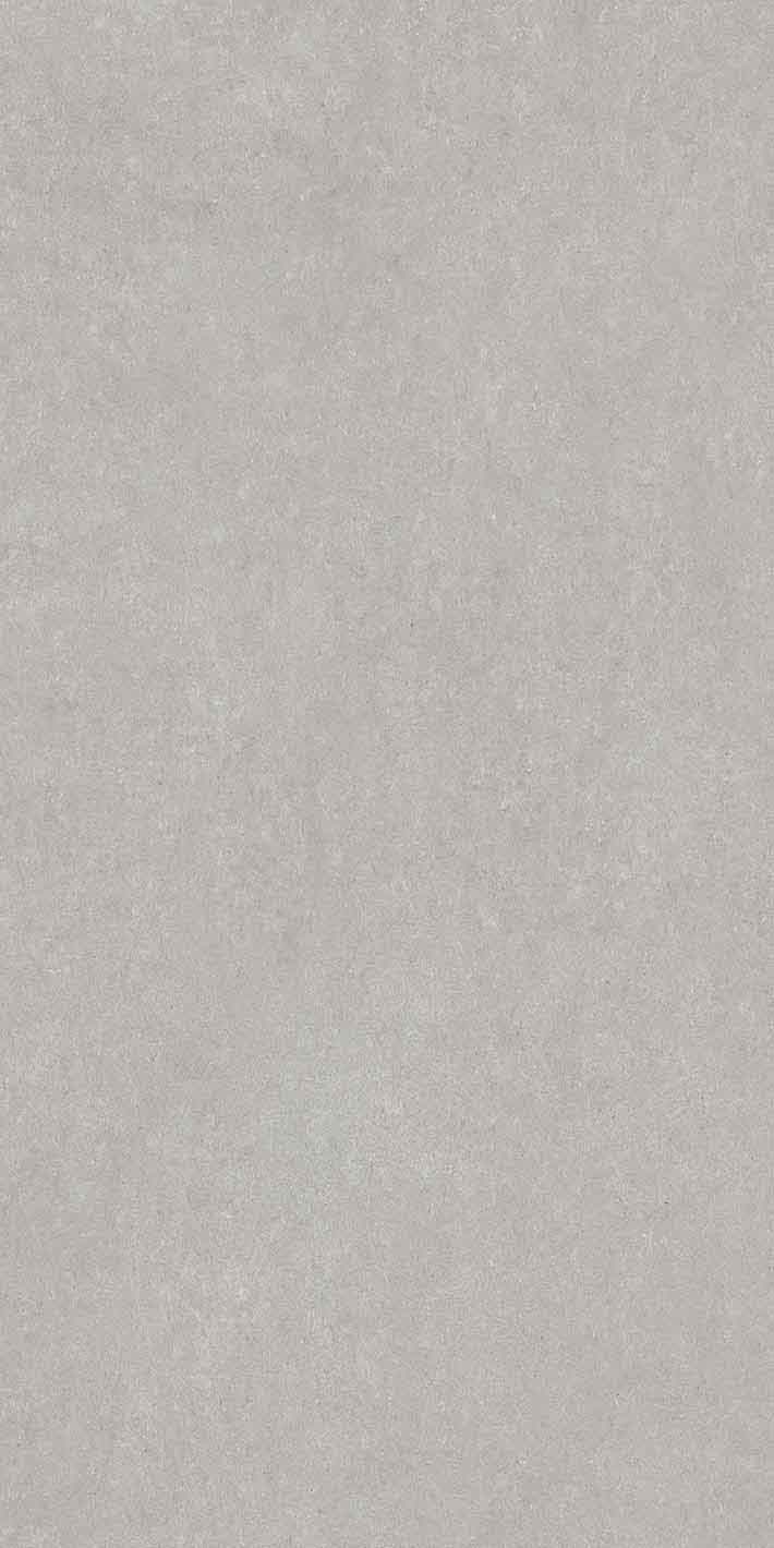 Elemental Stone Grey Sandstone Matte 10mm 60 x 120