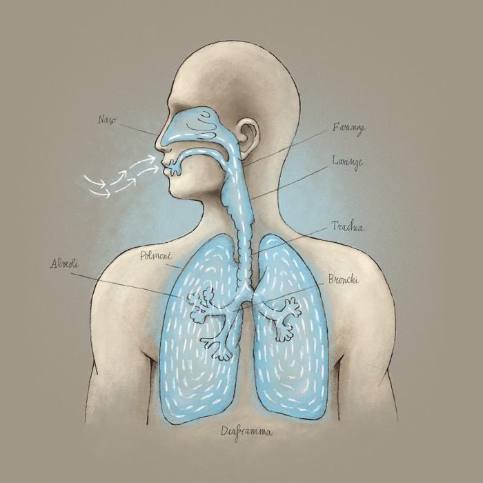 Rëndësia e frymëmarrjës Thumbnail