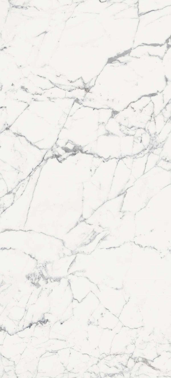 Les Origines de Rex Blanc Matte 6mm 120 x 280