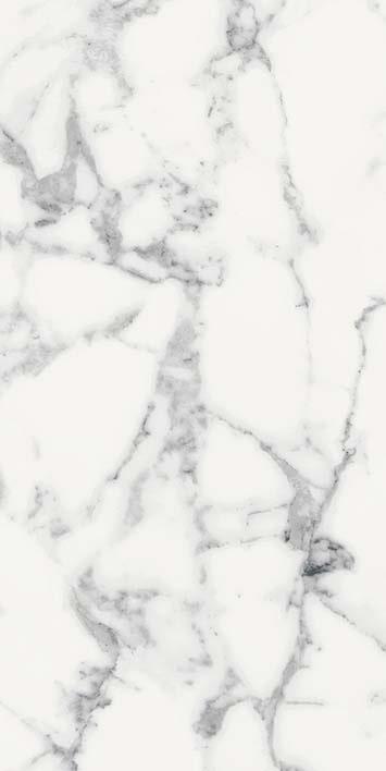 Les Origines de Rex Blanc Glossy 6mm 60 x 120